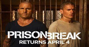 Prison Break Full Sezon Xvid