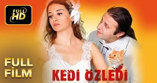 Kedi Özledi (2013) Yerli Film